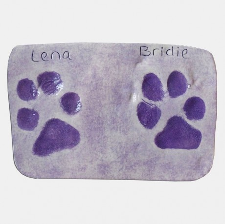 Clay paw print kit, dog paw print kit, paw print keepsake diy, clay paw print memorial, pet paw prints,