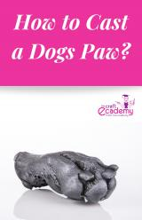 How to Cast a Dogs Paw?
