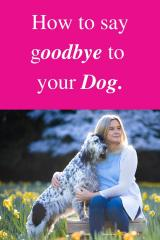 How to say Goodbye to your Dog