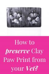 How to preserve Clay Paw Print from Vet