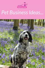Pet Business Ideas